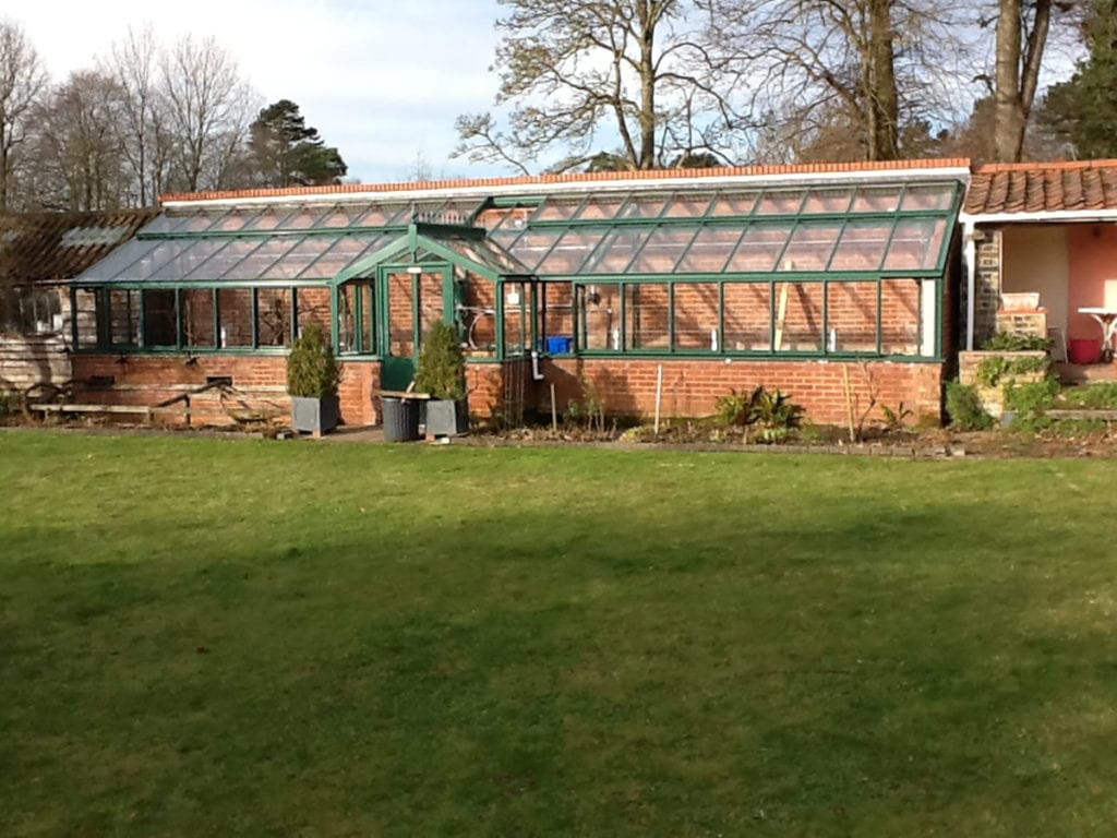 Lean-to aluminium greenhouse in Norfolk