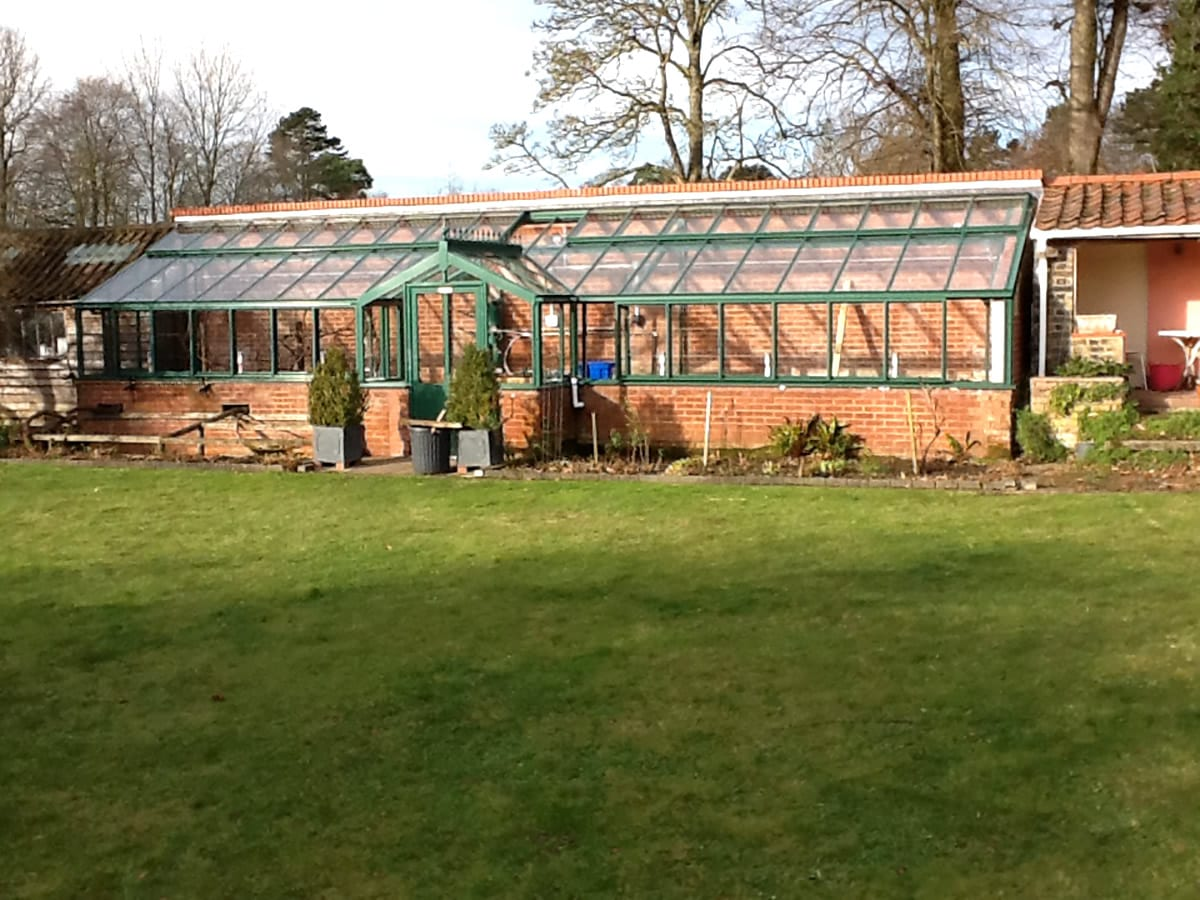 Bespoke aluminium lean-to greenhouse