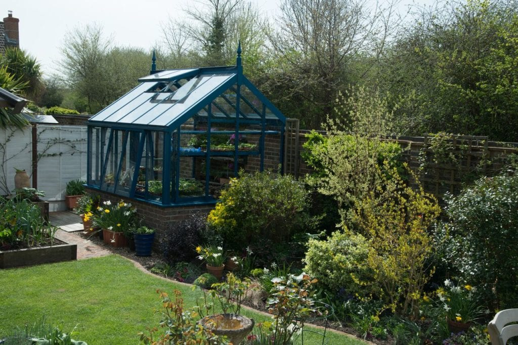 Blue greenhouse in Hampshire garden.
