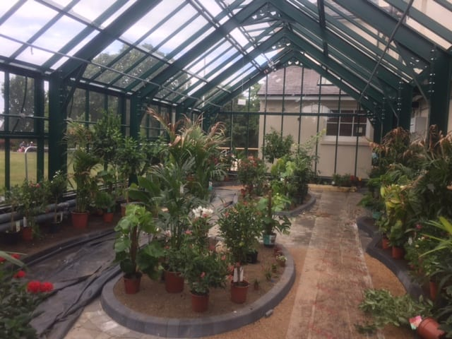 Butterfly house in Portsmouth Hampshire