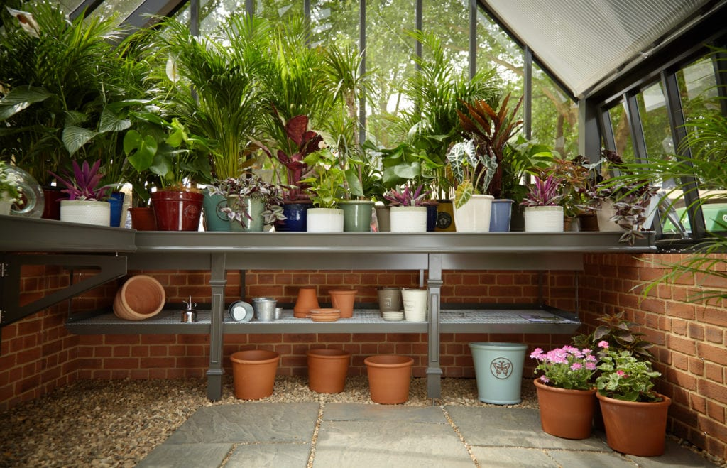 Traditional greenhouse benching and shelf